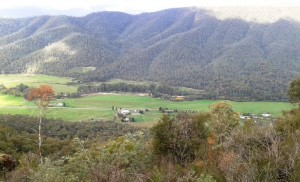 Harry Power's view of the King Valley