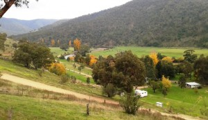 Part of the Wonnangatta Caravan Park