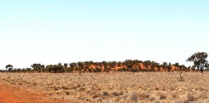 A mini sand dune near Quilpie
