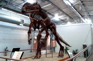 The land based dinosaur at Hughenden