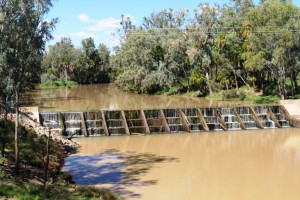 Irrigation weir on Dawson River