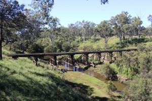Old railway bridge over the Burnett River at Ceratodus