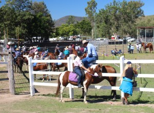 Action at Mount Perry show