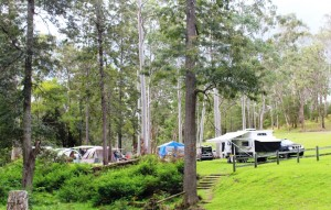 Campers at Peach Trees Camping Area Jimna