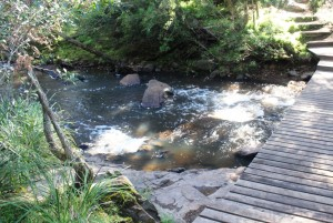 Yabba Yabba Creek at Peach Trees