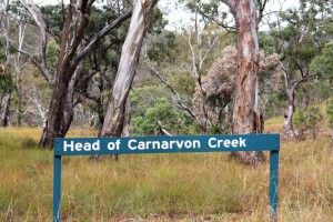 The very top of Carnarvon Gorge