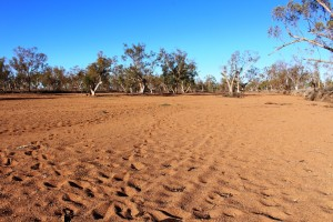 The dry sandy bed of the Plenty River