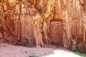 Aboriginal carvings of  sacred catapillars