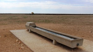 Water trough with a storage tank in the background.