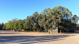 Accommodation is available on the shearers quarters, located among shady trees