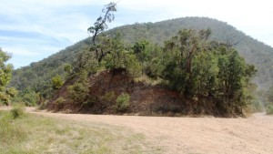 This sharp bend was the departure point for Collins Track and out eventual morning tea stop.