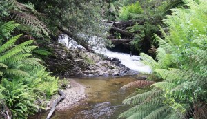 Waterfall near Mt Baw Baw