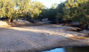 The Archer River winds through sand banks