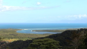 The Daintree Estuary