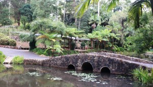 The foot bridge and shelters at the Tamborine Botanical Gardens