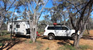 Set up among the trees at Barcaldine South