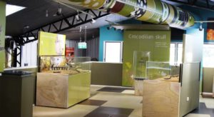 Inside the crocodile museum at Isisford