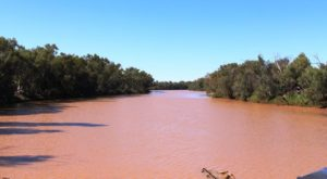 A full Bourke River at Boulia.