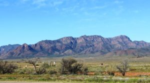 The Heyson Range from the Hawker Parachilna Road