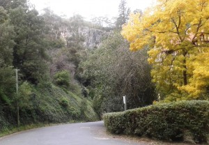 Caves House through Autumn tints