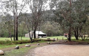 Geehi Hut at the camping area