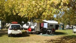 Parked under shady trees
