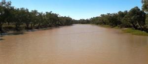 Ward River