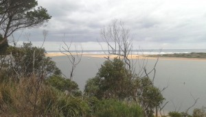 Mouth of Snowy River