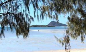 Dingo Beach - A stroll at low tide