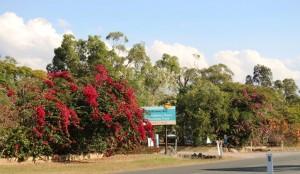 The entrance to the caravan park