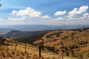 Cleared slopes of the Upper Hunter Valley in the afternoon sunlight.