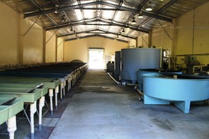 Processing centre for breeding eggs but not operating at this time of the year.