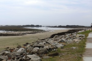 Brooms Head at low tide