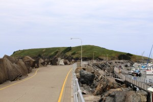 The headland at Coffs Harbour