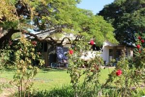 Garden at Trinidad Station.