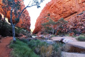 We called in at Simpsons Gap on our way to Palm Valley