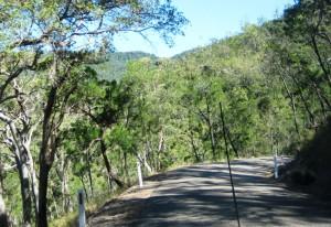 A sample of the narrow Mt Spec Road