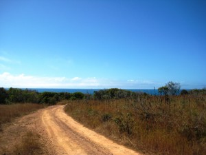 The road emerged from the bush to present this view
