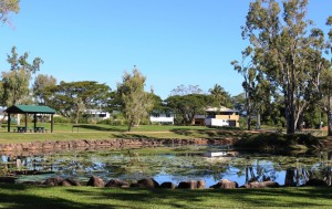 Ingham's Tyto wetlands are worth a visit