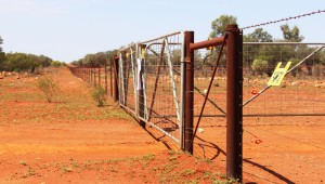 A long straight fence
