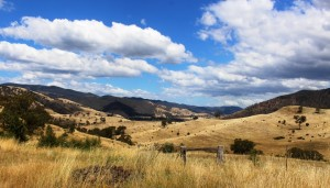 A view along the Macalister Valley from the Licola to Jamieson Road.
