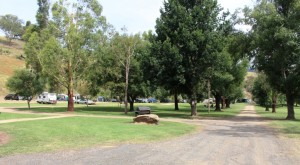 The broad spaces of the caravan park from ground level.