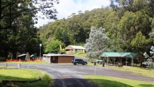 The picnic area at Tanjil Bren, on the way to Mt Baw Baw