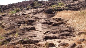 The start of the climb up Cape York headland