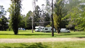 Motor homes in the Urbenville municipal camping area