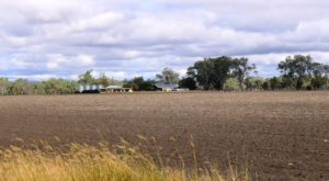 Recently plowed land with house and sheds north of Biloela