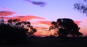 A crimson sunset