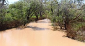 A main channel of the Diamantina River almost full of water