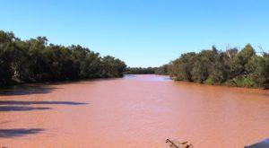 A full Bourke River at Boulia.