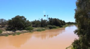 The Diamantina River at Birdsville. Water levels are rising as the recent rains to the north slowly move towards Lake Eyre